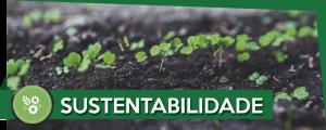 sustentabilidade-self-horta